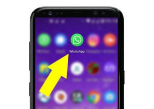 How to Delete Status in WhatsApp